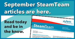 SteamTeam_Sept2015_300x158