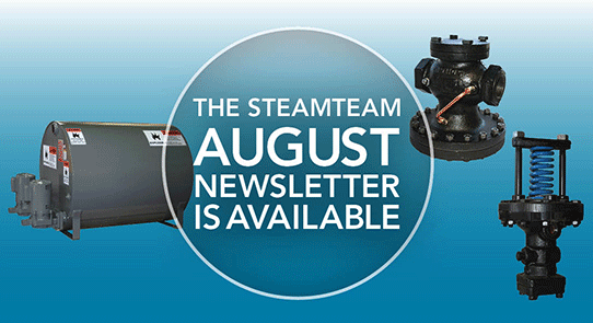 SteamTeam_August_542x295