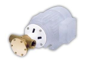 22870 Bronze Pump Head Kit