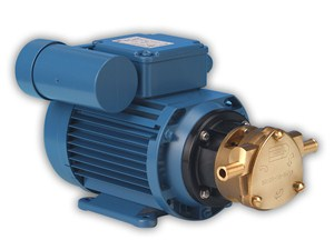 50005 Bronze AC Motor Pump Unit
