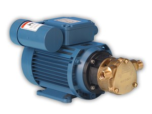 50010 Bronze AC Motor Pump Unit