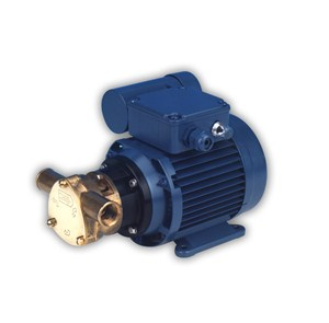 50020 Bronze AC Motor Pump Unit