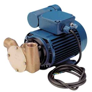 53020 Bronze 'Utility Pump' AC Motor Pump Unit