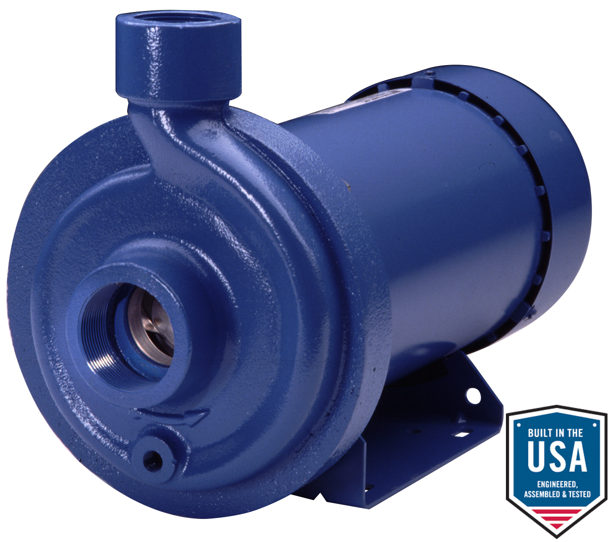 MCC Cast Iron Pumps with 316 Stainless Steel Impellers