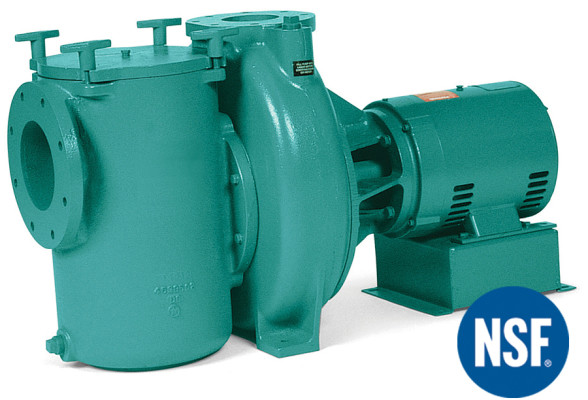 Marlow Series – 4SPC Series Swimming Pool Pump