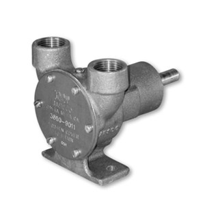 3890 Series 3/4″ Pedestal Pump