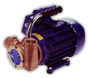 53040 Bronze 'Utility Pump' AC Motor Pump Unit