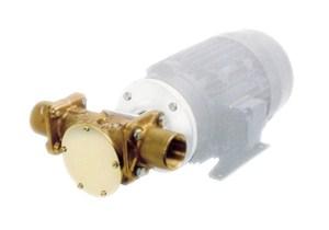 22880 Bronze Pump Head Kit