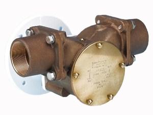 22890 Bronze Pump Head Kit
